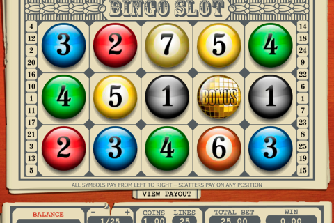 bingo slot pragmatic