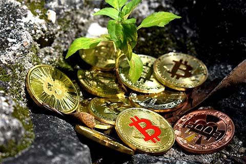 criptomoeda moeda futuro