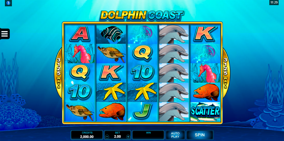 dolphin coast microgaming
