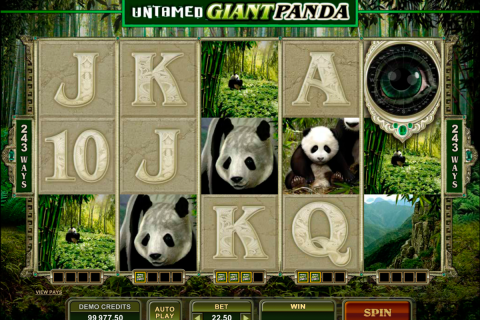 untamed giant panda microgaming