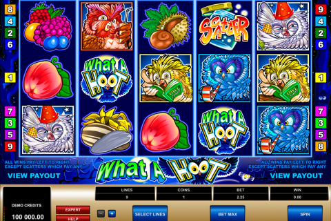what a hoot microgaming