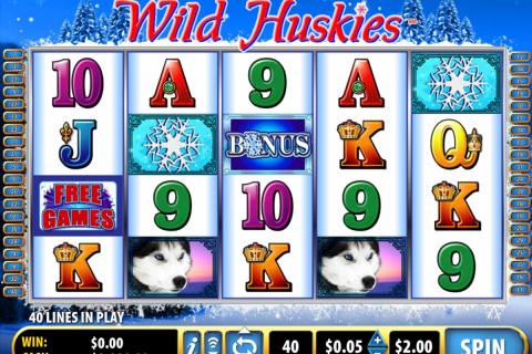wild huskies bally
